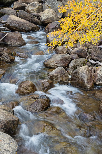 Fall Mountain Stream Stock photo © pancaketom