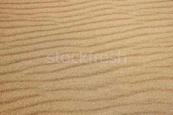 Areia superfície pormenor textura fundo Foto stock © pancaketom