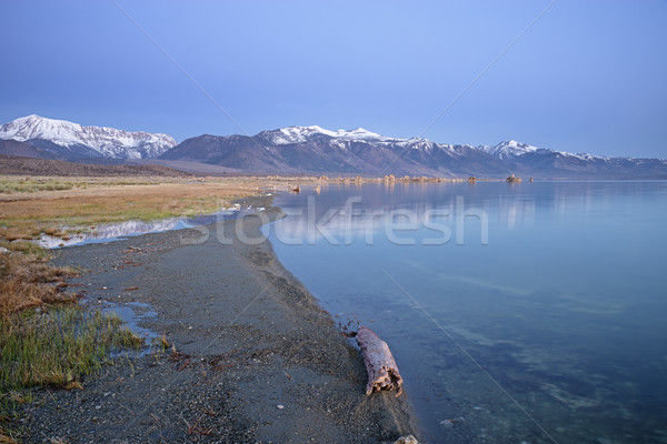 Mono Lake Shoreline Stock photo © pancaketom