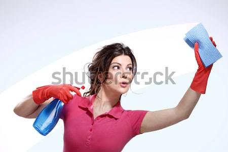Stok fotoğraf: Mutlu · genç · ev · kadını · mükemmel · temizlemek