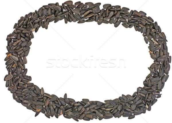 Marco frescos girasol semillas oval negro Foto stock © papa1266