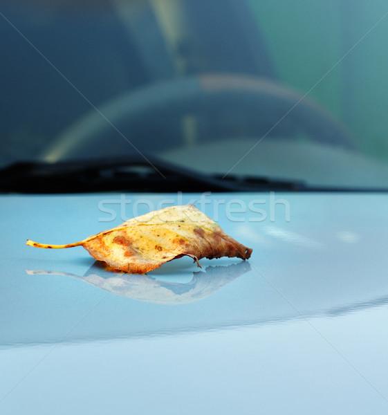осень Maple Leaf автомобилей окна время небе Сток-фото © papa1266