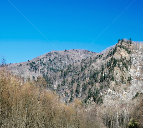 Valle hermosa invierno día acantilado superior Foto stock © papa1266