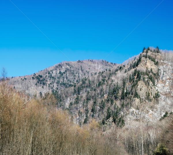 Vallei mooie winter dag klif top Stockfoto © papa1266
