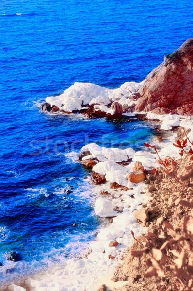 Ijs steen december zee rotsen japans Stockfoto © papa1266