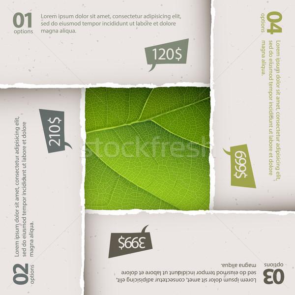 Groen blad textuur gescheurd papier platen opties vector Stockfoto © pashabo