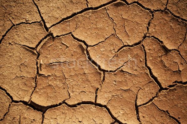 Erozyon doku doğa yaz sıcak kırık Stok fotoğraf © pashabo
