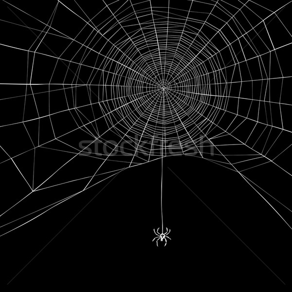 Halloween background. Spider web. Vector illustration Stock photo © pashabo