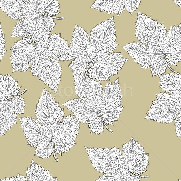 ブドウ 葉 ベクトル eps8 簡単 ストックフォト © pashabo