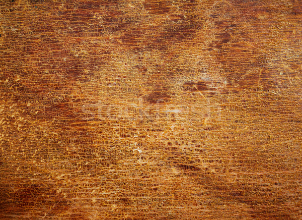 Wood texture with the old cracked varnish surface. Stock photo © pashabo