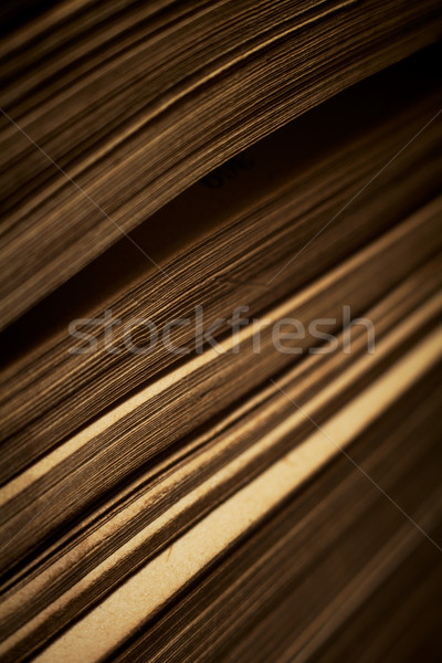 Close-up of book pages. Shallow DOF. Stock photo © pashabo