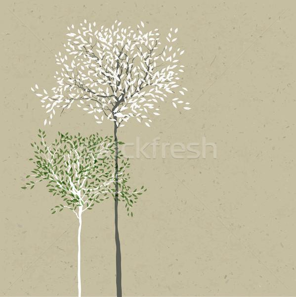 Fák levelek különálló rétegek vektor papír Stock fotó © pashabo