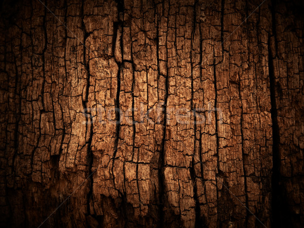 Stock photo: Old wood cracked texture