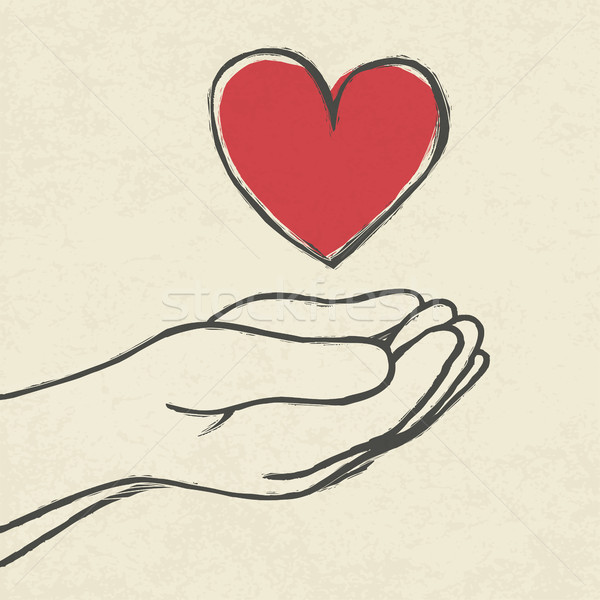 Heart in hands.  Stock photo © pashabo