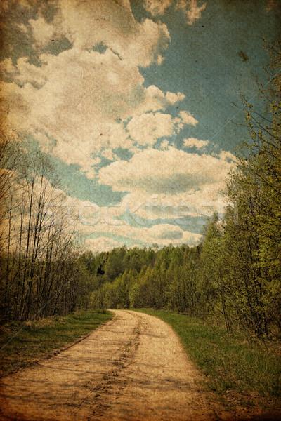 Grunge rural road Stock photo © pashabo