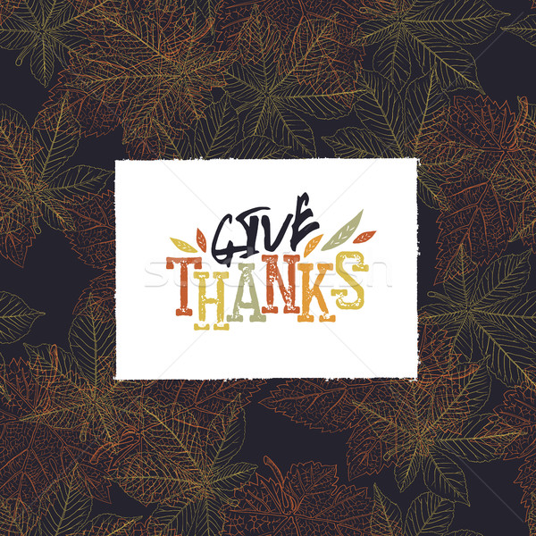 Give Thanks Postcard. Happy Thanksgiving greeting card design Stock photo © pashabo