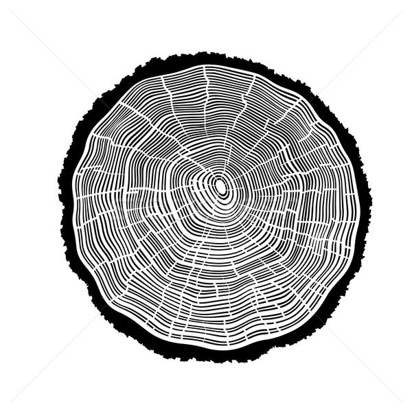 Ringen boom scheuren hout kaart natuur Stockfoto © pashabo
