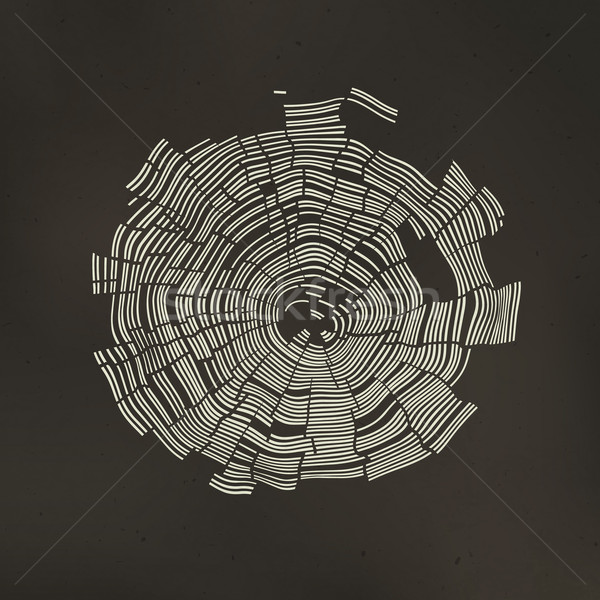 Tree Rings Background. Template for annual reports, brochures, e Stock photo © pashabo