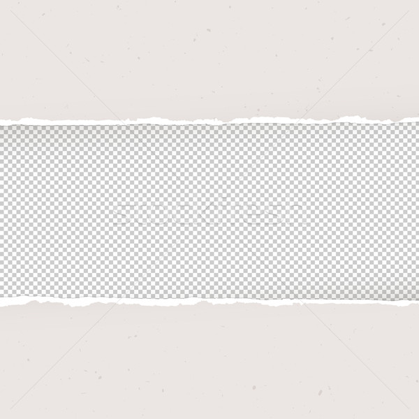 Torn paper on transparent background. Design template, Vector Stock photo © pashabo