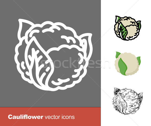 Cauliflower vector icons. Thin line, flat, and hand drawn styles Stock photo © pashabo