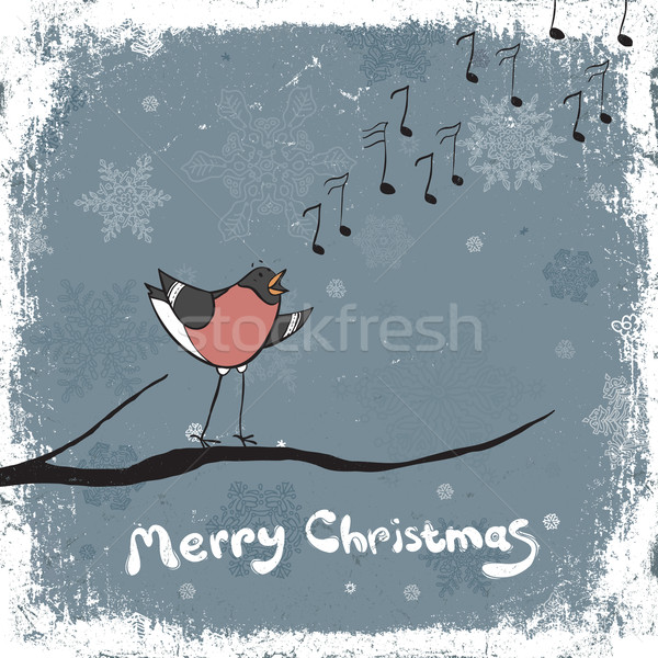 Bullfinch singer. Vintage xmas illustration, vector, EPS8 Stock photo © pashabo