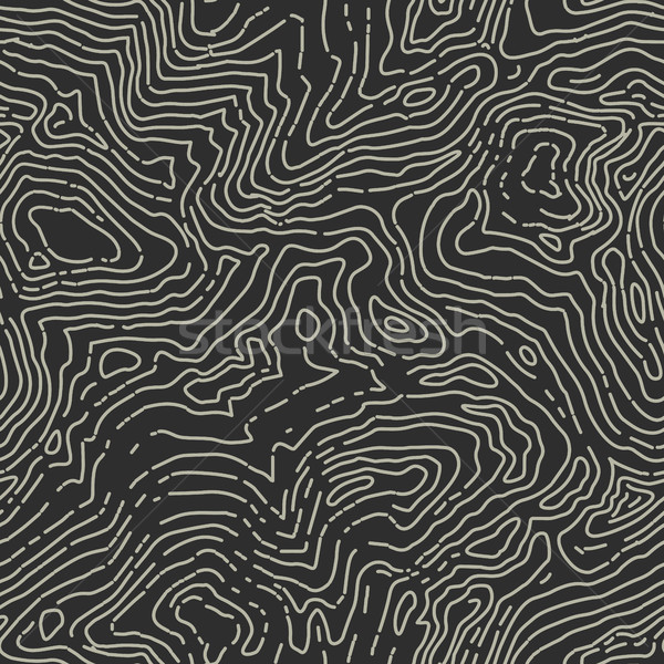 Naadloos contour kaart patroon vector natuur Stockfoto © pashabo