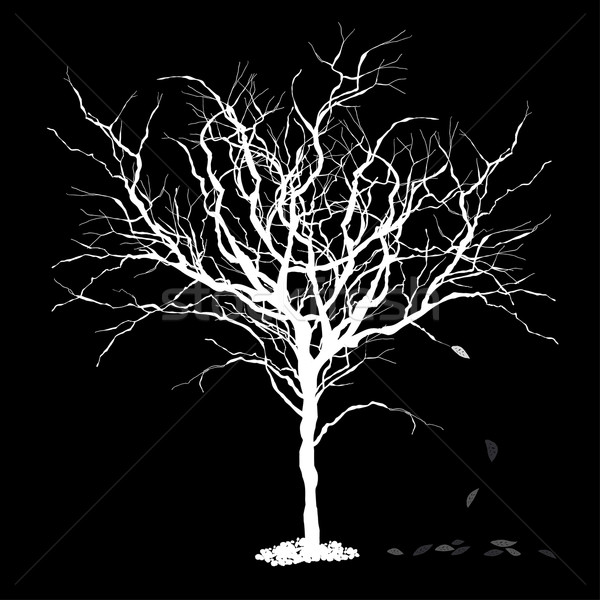 Stock photo: Tree silhouettewith fallen leaves. Vector illustration, EPS8.