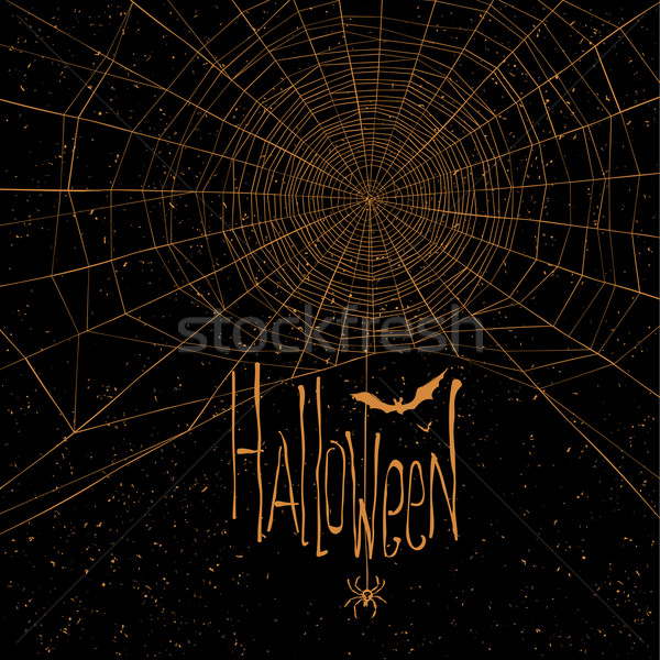 Halloween themed background with spider web and text Stock photo © pashabo