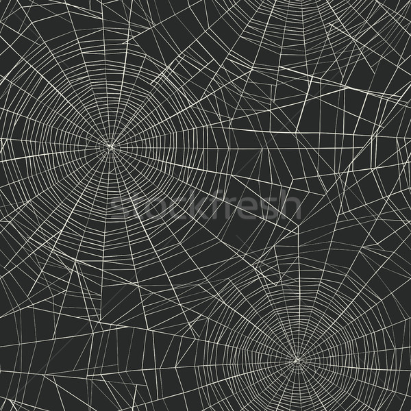 Halloween örümcek ağı dizayn arka plan gece Stok fotoğraf © pashabo