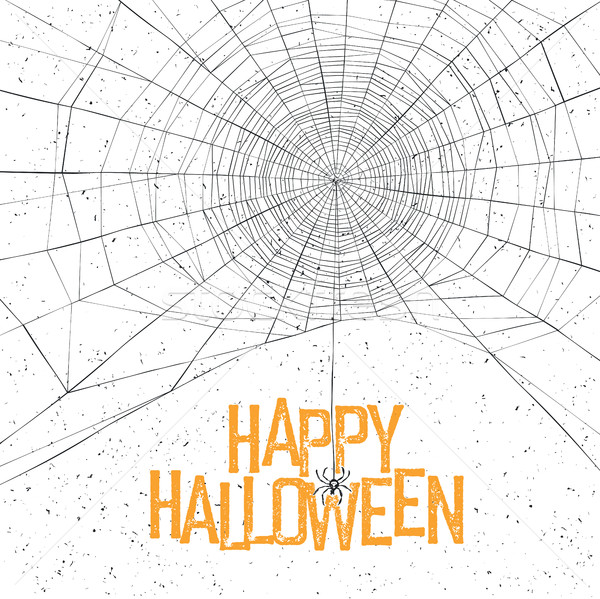 Halloween background with spider web and text Stock photo © pashabo