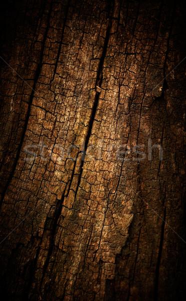 Old wood cracked texture  Stock photo © pashabo