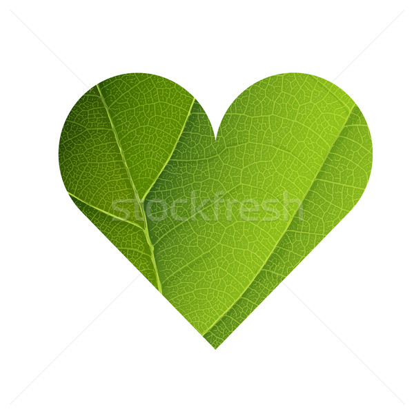Green Leaf Veins Texture Heart Shaped. Earth Day Concept Design. Stock photo © pashabo