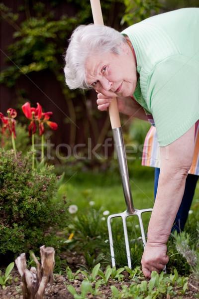 庭園 シニア 女性 幸せ 仕事 ストックフォト © Pasiphae