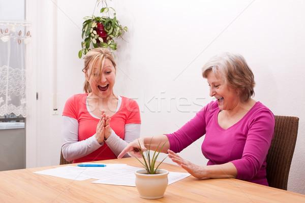 Duas mulheres alegre mensagem sala de estar negócio família Foto stock © Pasiphae