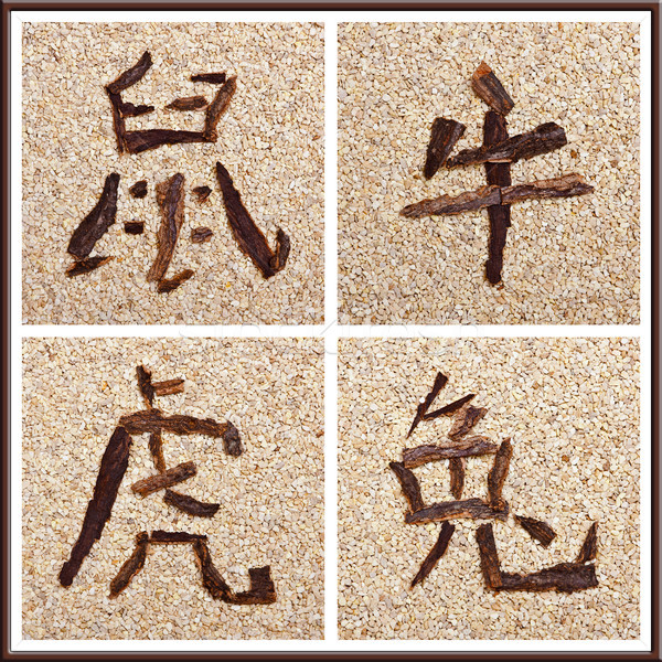 Chinese Zodiac Part 1 Stock photo © Pasiphae