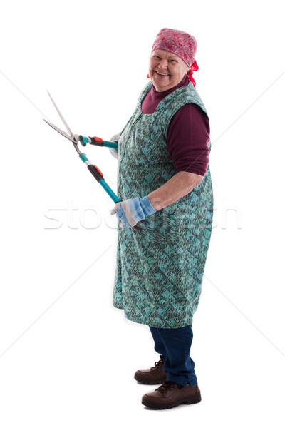 Senior using a secateurs Stock photo © Pasiphae