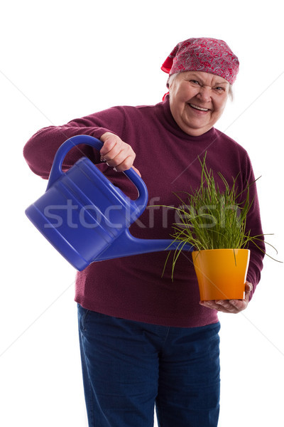 friendly senior holding a watering can Stock photo © Pasiphae