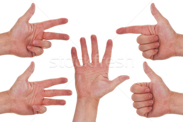 Caucasian hands counting from one to five Stock photo © Pasiphae
