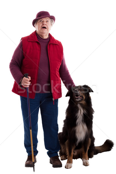 Active Senior Woman with walking stick and dog 2 Stock photo © Pasiphae