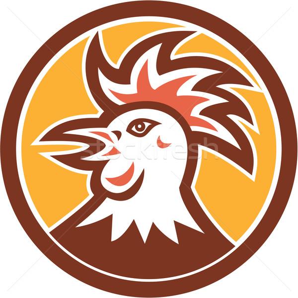 Cockerel Rooster Head Circle Retro Stock photo © patrimonio