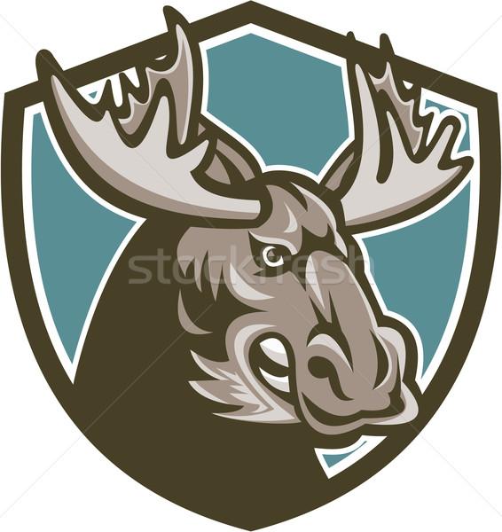 Arrabbiato Moose mascotte scudo illustrazione testa Foto d'archivio © patrimonio