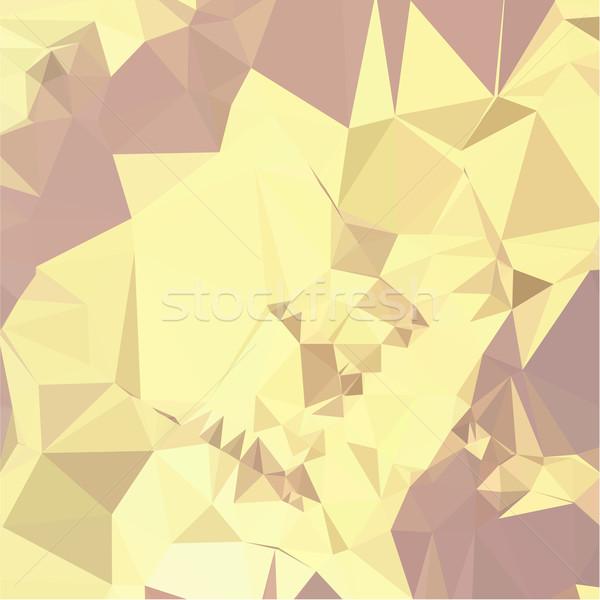 Jaune résumé faible polygone style illustration Photo stock © patrimonio