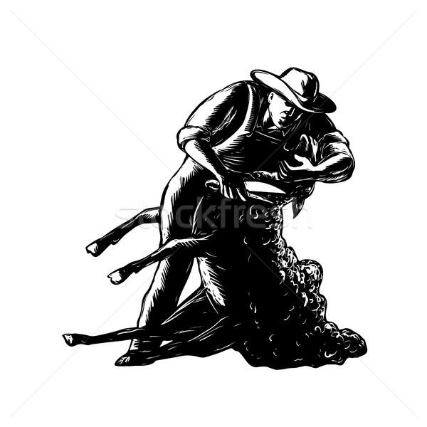 Owiec retro stylu ilustracja rolnik front Zdjęcia stock © patrimonio