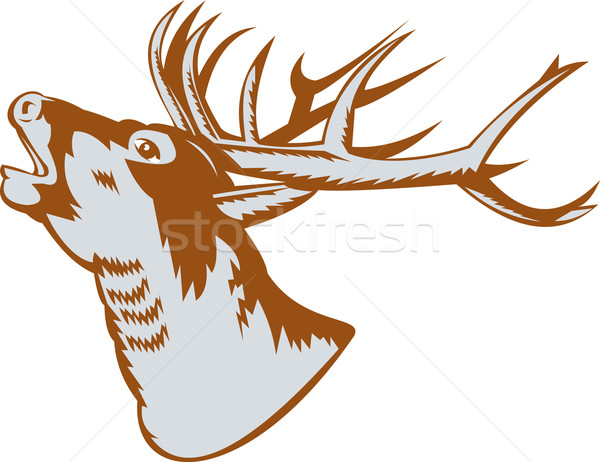 Stag Deer Roaring Stock photo © patrimonio