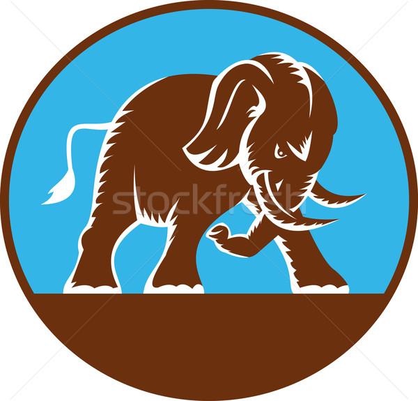Foto stock: África · toro · elefante · ilustración · elefante · africano · retro