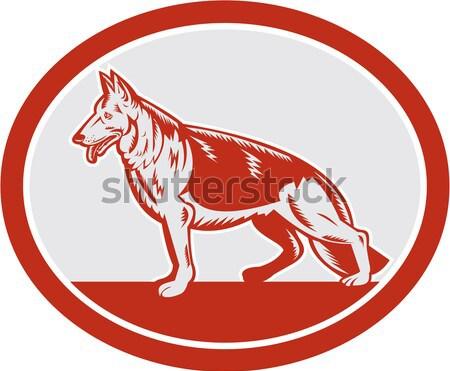 Vermelho raposa lado oval retro ilustração Foto stock © patrimonio