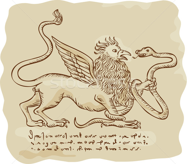 Griffin Fighting Snake Side Etching Stock photo © patrimonio