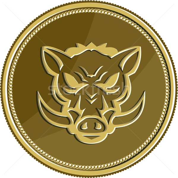 Wild Hog Head Angry Gold Coin Retro Stock photo © patrimonio