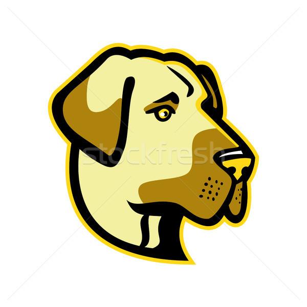 Pastor cão mascote ícone ilustração cabeça Foto stock © patrimonio