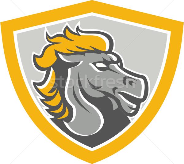 Bronco Horse Head Shield Stock photo © patrimonio